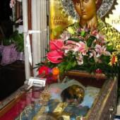 Sfântul Ioan Rusul își cunoaște închinătorii