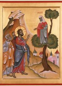 """Dudul lui Zaheu, """"scară"""" către Hristos"""